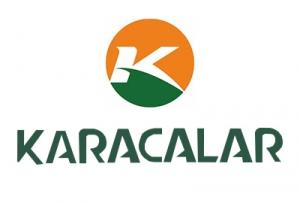 Karacalar